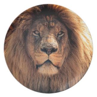 Assiette Plan rapproché de lion