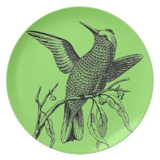 Assiette Plats vintages de vert sauge de colibri