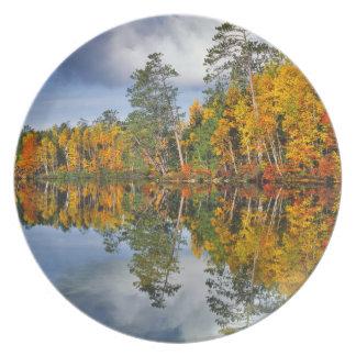 Assiette Réflexions d'étang d'automne, Maine