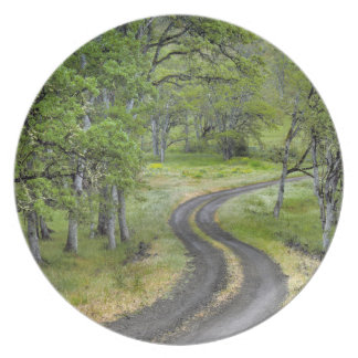 Assiette Route de campagne par des arbres, Orégon