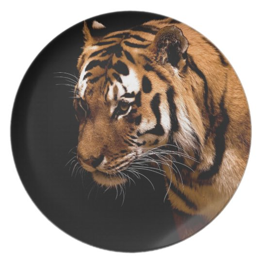 Assiette Tiger