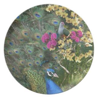 Assiette Un paon et la colombe dans un monde des orchidées