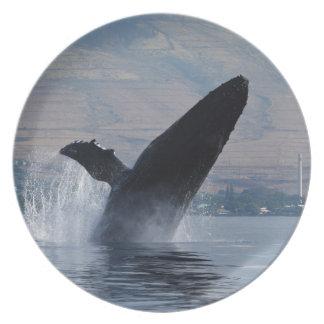 Assiette violation de baleine de humback