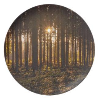 Assiette Vue des arbres noirs et du Sun