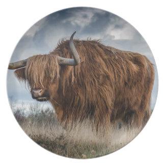 Assiette Yaks de Brown sur le vert et le champ d'herbe de