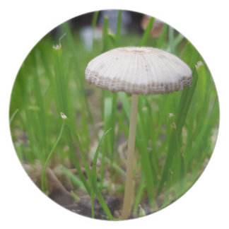 Assiettes En Mélamine champignon de bébé