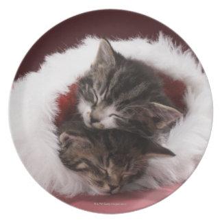 Assiettes En Mélamine Chatons endormis ensemble dans le casquette de