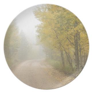 Assiettes En Mélamine Chemin de terre brumeux pendant la saison