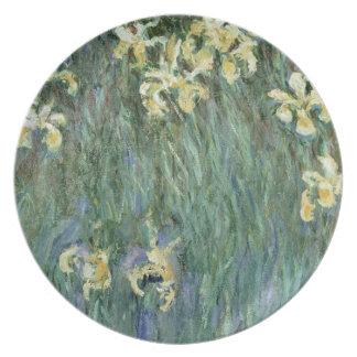 Assiettes En Mélamine Claude Monet | les iris jaunes