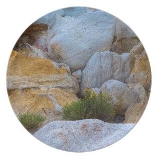 Assiettes En Mélamine Couches géologiques de texture et fleurs jaunes
