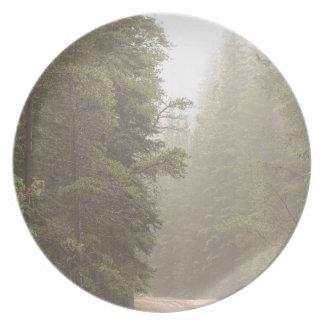 Assiettes En Mélamine Défi de chemin de terre dans la brume