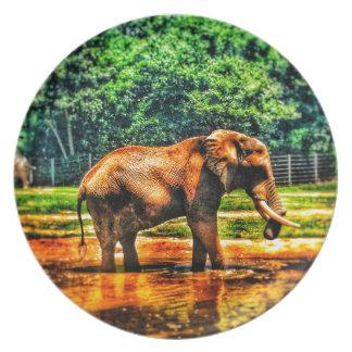 Assiettes En Mélamine éléphant fullsizeoutput_1104