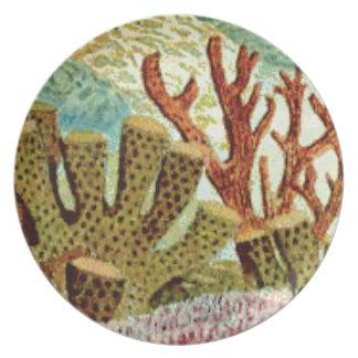 Assiettes En Mélamine éponges et corail