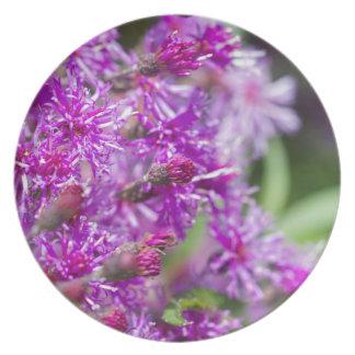 Assiettes En Mélamine Fleurs sauvages grands d'herbe de Saint-Jacques
