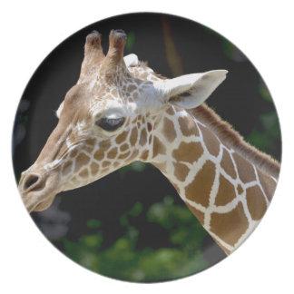 Assiettes En Mélamine Girafe de Brown pendant la journée