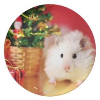 Assiettes En Mélamine Hamster Kokolinka avec l'arbre de Noël