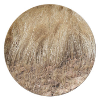Assiettes En Mélamine iDetail d'un champ de teff pendant la récolte