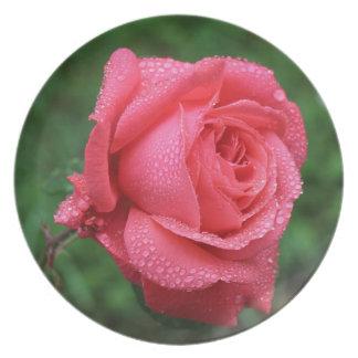 Assiettes En Mélamine La Rose