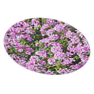 Assiettes En Mélamine Le pourpre fleurit le plat de mélamine