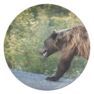 Assiettes En Mélamine L'ours gris le Yukon, Canada attaque, des