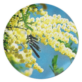 Assiettes En Mélamine Mimosa de France