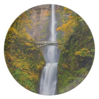 Assiettes En Mélamine Multnomah tombe dans des couleurs d'automne