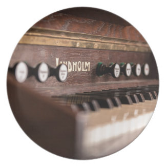 Assiettes En Mélamine Musique vieille Pologne antique d'instrument de