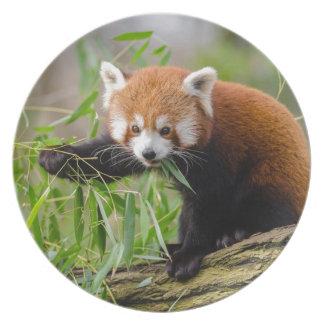 Assiettes En Mélamine Panda rouge mangeant la feuille verte