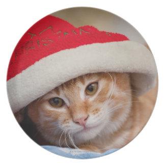 Assiettes En Mélamine Petit chaton dans le casquette rouge de Noël