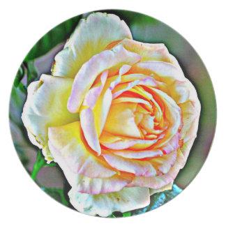 Assiettes En Mélamine Plat rose de mélamine de beauté