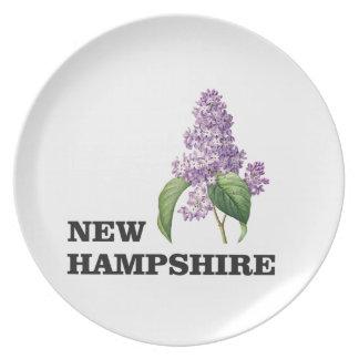 Assiettes En Mélamine plus du New Hampshire