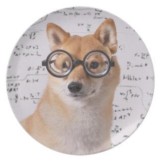 Assiettes En Mélamine Professeur Barkley Melamine Plate