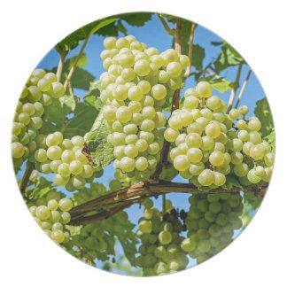 Assiettes En Mélamine raisins