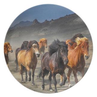 Assiettes En Mélamine Ruée de chevaux