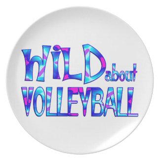 Assiettes En Mélamine Sauvage au sujet du volleyball