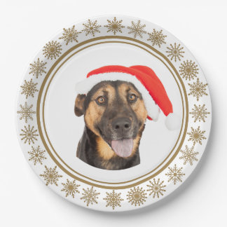 Assiettes En Papier Amoureux de les chiens de casquette de Père Noël