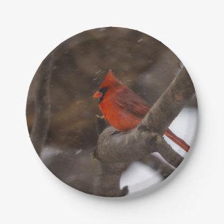 Assiettes En Papier Cardinal de tempête de neige