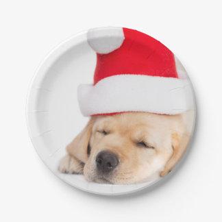 Assiettes En Papier Cher Père Noël Dreams