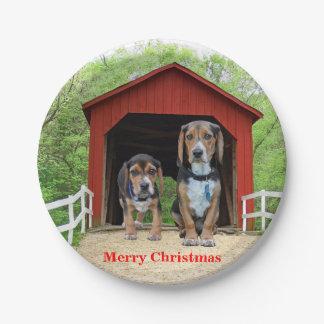Assiettes En Papier Chiots drôles de chien de beagle de Joyeux Noël