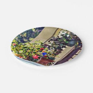 Assiettes En Papier Fleurs sur le porche