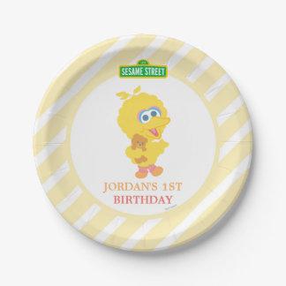 Assiettes En Papier Grand anniversaire d'oiseau de bébé