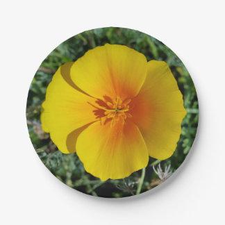 Assiettes En Papier jaune d'automne