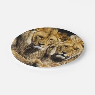 Assiettes En Papier Lions prédateurs dangereux
