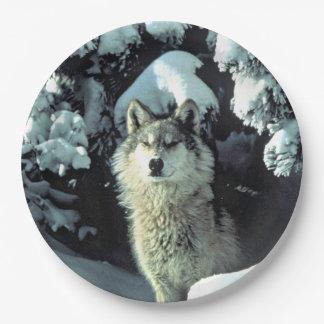 Assiettes En Papier Loup dans la neige