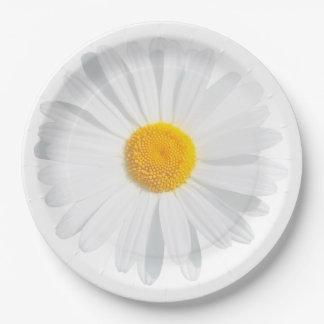 Assiettes En Papier marguerite blanche
