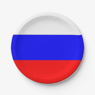 Assiettes En Papier Plaque à papier patriotique avec le drapeau de la