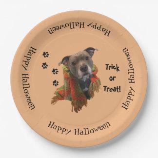 Assiettes En Papier Plaques à papier de Halloween Pitbull de super