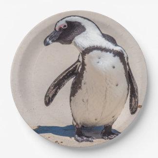 Assiettes En Papier Plaques à papier de pingouin espiègle