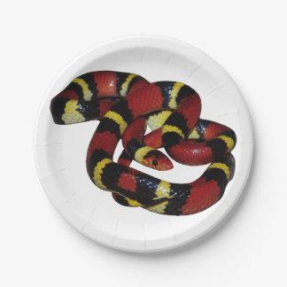 Assiettes En Papier Serpent de lait