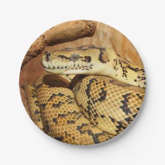 Assiettes En Papier Serpent de python